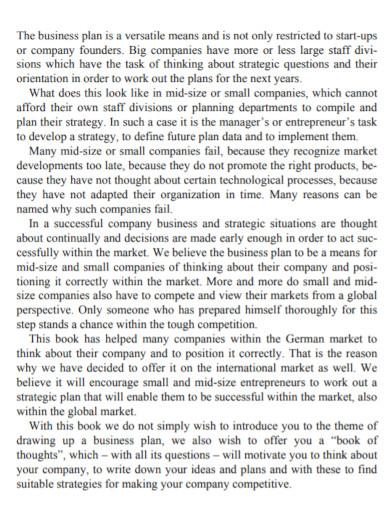 investors new business plan