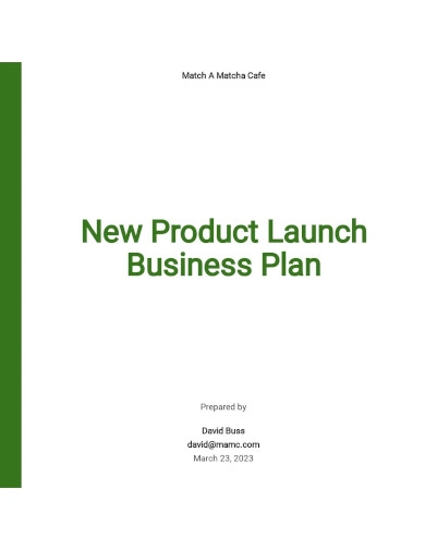 new product launch business plan template