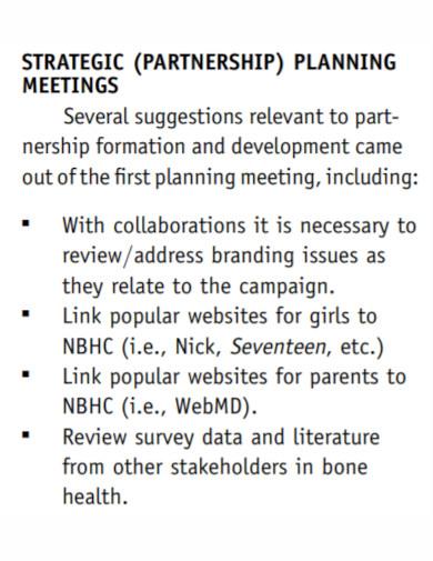 partnership marketing plan template