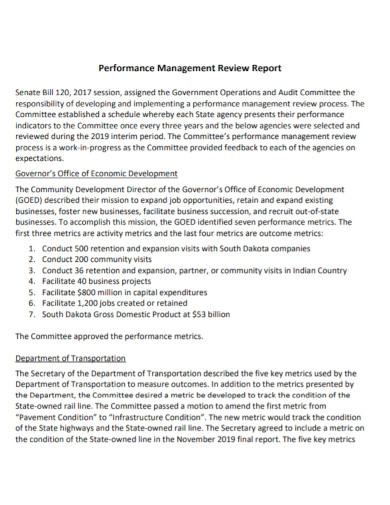 performance management review report