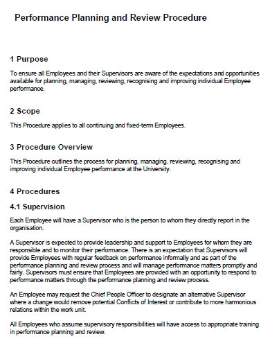 performance planning and review procedure