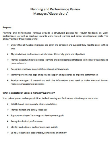 performance review planning in pdf