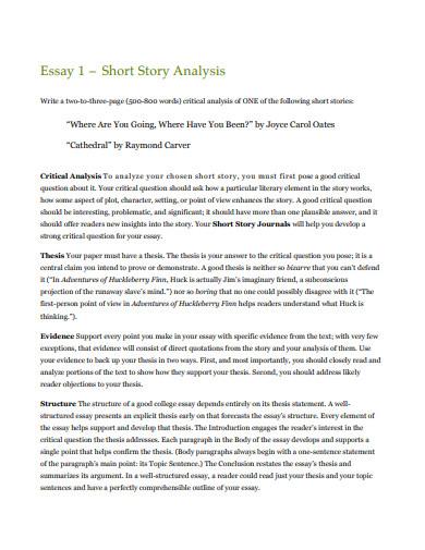 printable short story analysis essay