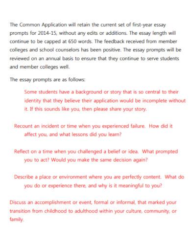 standard application essay