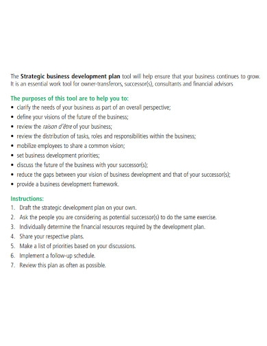 strategic business development plan