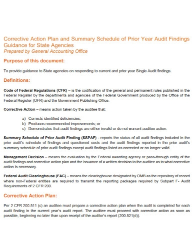 accounting office action plan