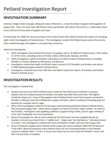 business investigation report in pdf
