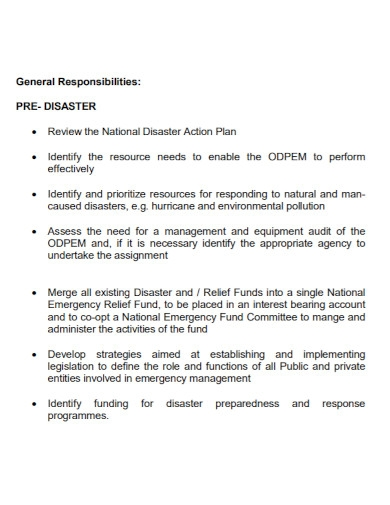 national disaster action plan