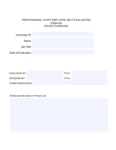 professional employee self evaluation