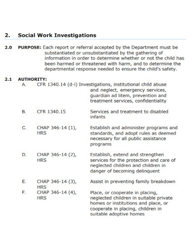 social work investigation report