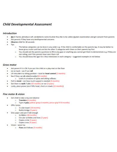 developmental assessment in pdf