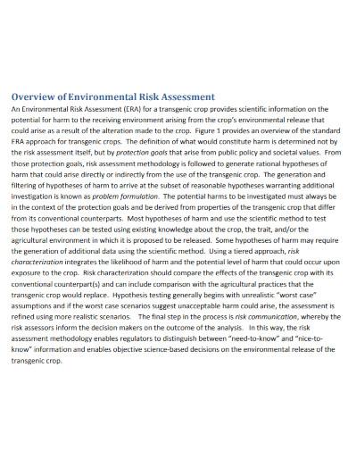 environmental risk assessment template