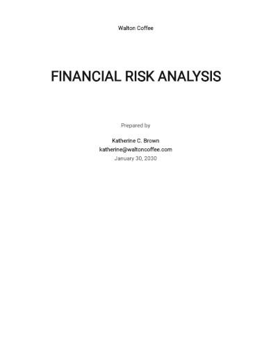 financial risk assessment template1