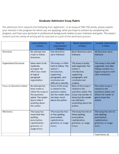 graduate admission essay