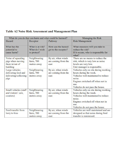 noise risk assessment and management plan