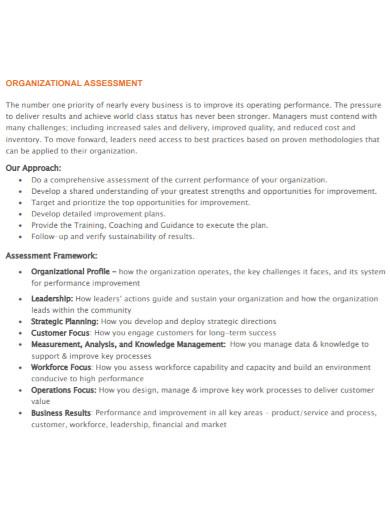 organizational assessment template