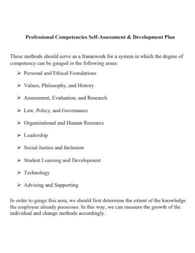 professional self assessment