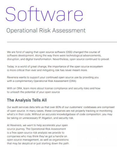 software operational risk assessment