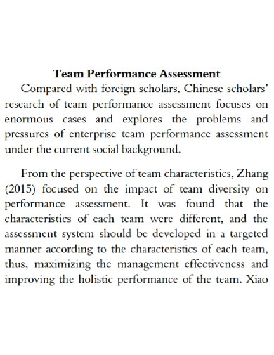 standard team performance assessment