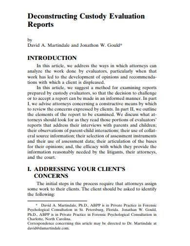deconstructing custody evaluation report
