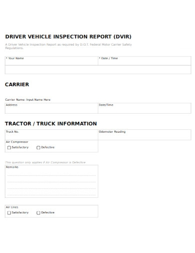 driver motor vehicle inspection report