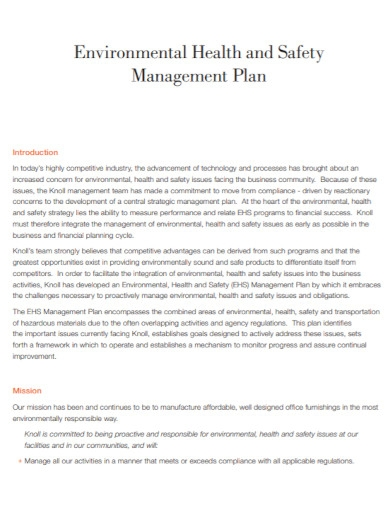 environmental health and safety management plan