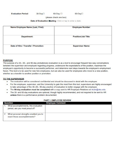 probationary evaluation template