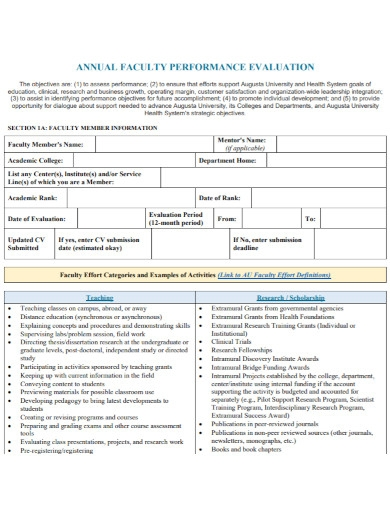 annual faculty performance evaluation